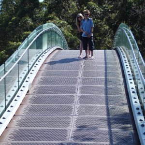 Bridge at Kings Park